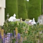Cemitério municipal (Punta Arenas)