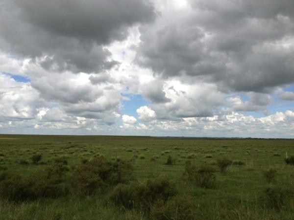 Pampas uruguaios, tão belos como os do Rio Grande do Sul