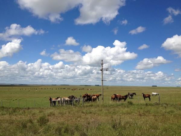 Paisagens do Uruguai