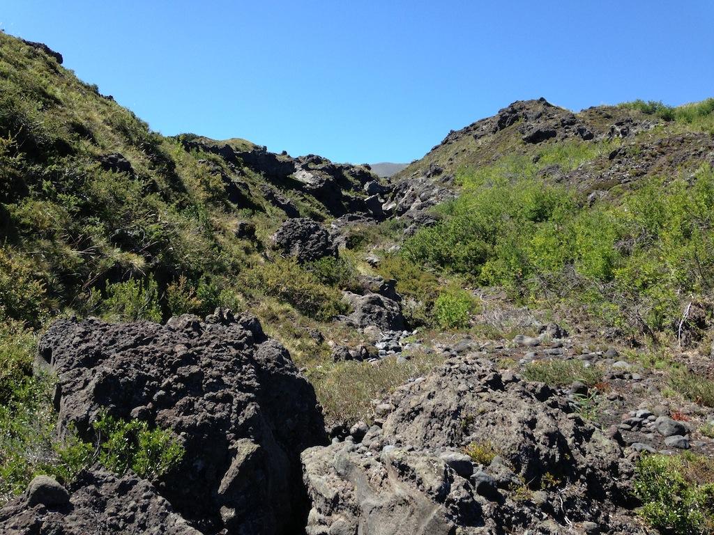 Rio de lava petrificada (vulcão Llaima ao fundo)