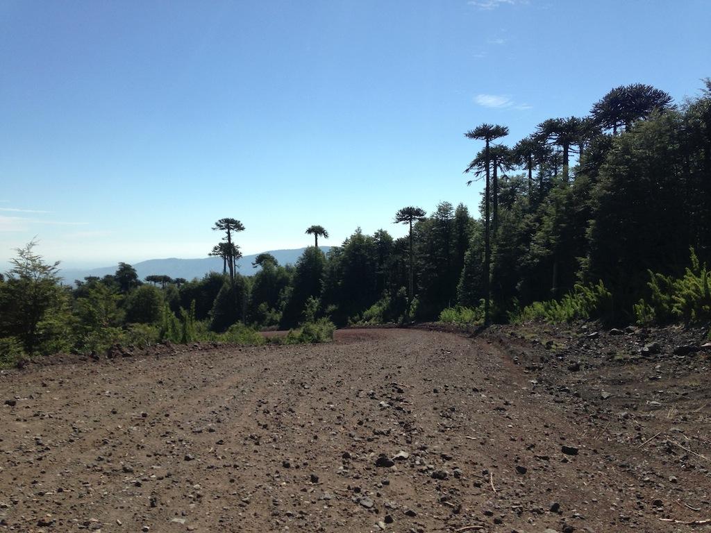 Rípio em condições ruins na ruta S-287 (últimos 3km antes de chegar no Araucarias Ski & Lodging)